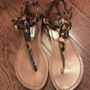 Steve Madden Flat Leopard Sandals